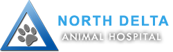 North Delta Animal Hospital | Veterinary Clinic in Delta, Surrey | Veterinarians in Delta, Surrey | Delta Vets | Surrey Vets